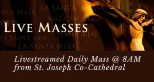 Click for Livestreamed Mass at 8AM Daily from St Joseph Co-Cathedral