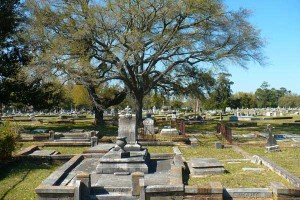 Old_Catholic_Cemetery_06